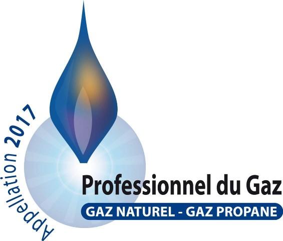 Professionnel du gaz 2017